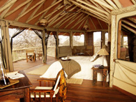 Luxury Wildlife Lodge