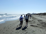 Beachcombing under the Mexican sun