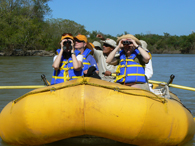Bird-Rafting on El Fuerte River