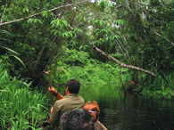 Jungle Canoe excursions