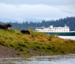 400x300-bears-shoreline-vessel