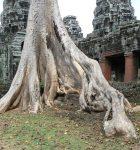 Laos:Camb-128